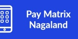 Pay Matrix Nagaland-Min