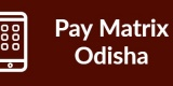 Pay Matrix Odisha-Min
